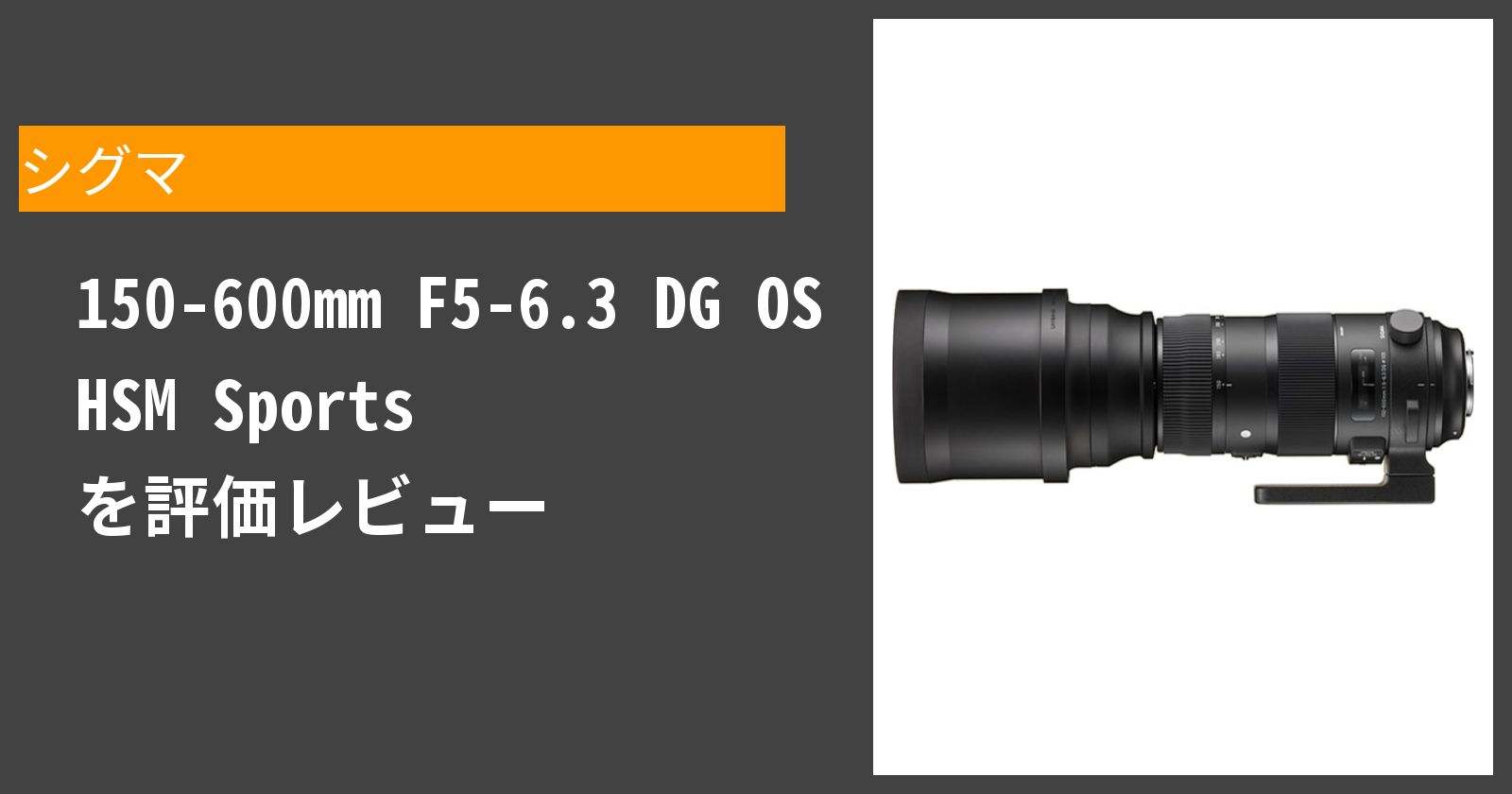 150-600mm F5-6.3 DG OS HSM Sportsを徹底評価