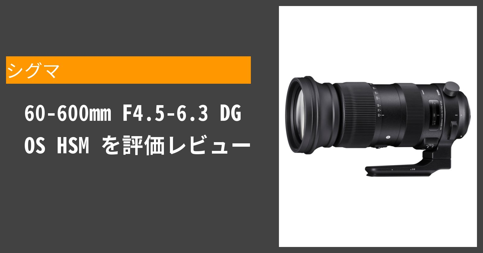60-600mm F4.5-6.3 DG OS HSMを徹底評価