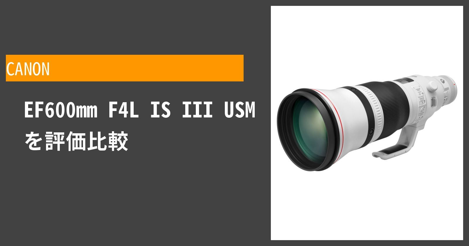 EF600mm F4L IS III USMを徹底評価