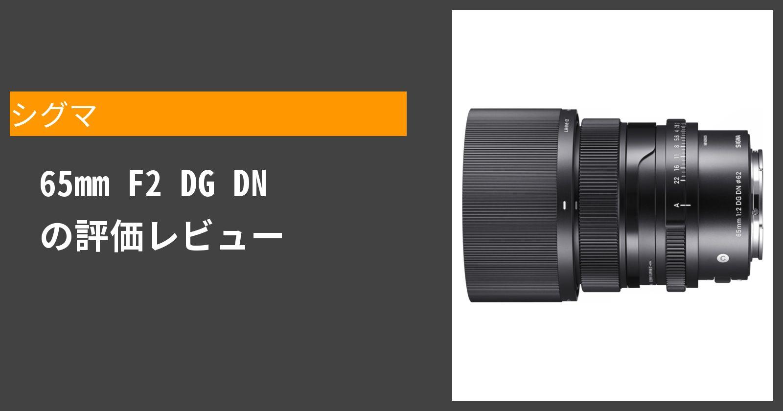 65mm F2 DG DNを徹底評価
