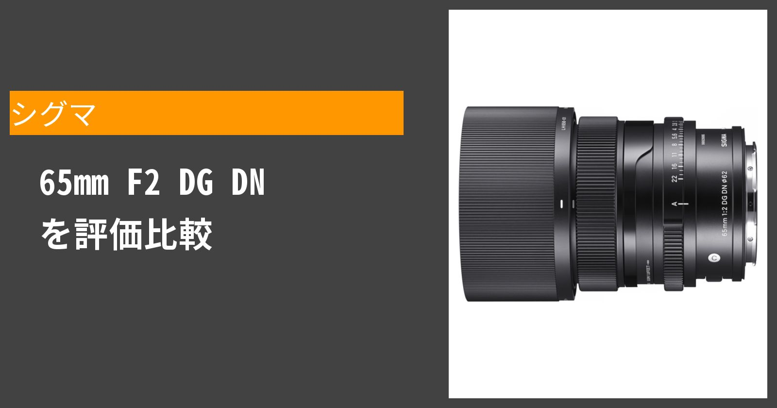 65mm F2 DG DNを徹底評価
