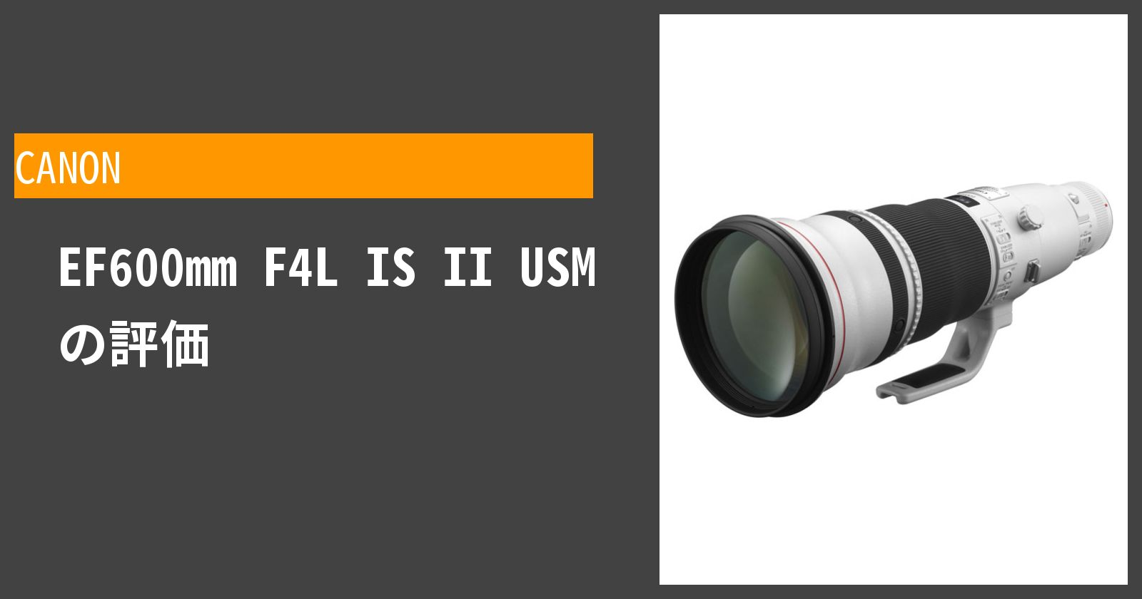 EF600mm F4L IS II USMを徹底評価
