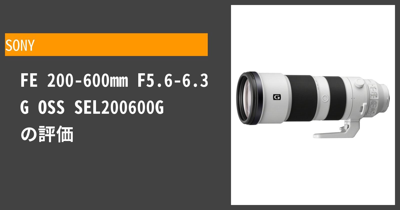 FE 200-600mm F5.6-6.3 G OSS SEL200600Gを徹底評価