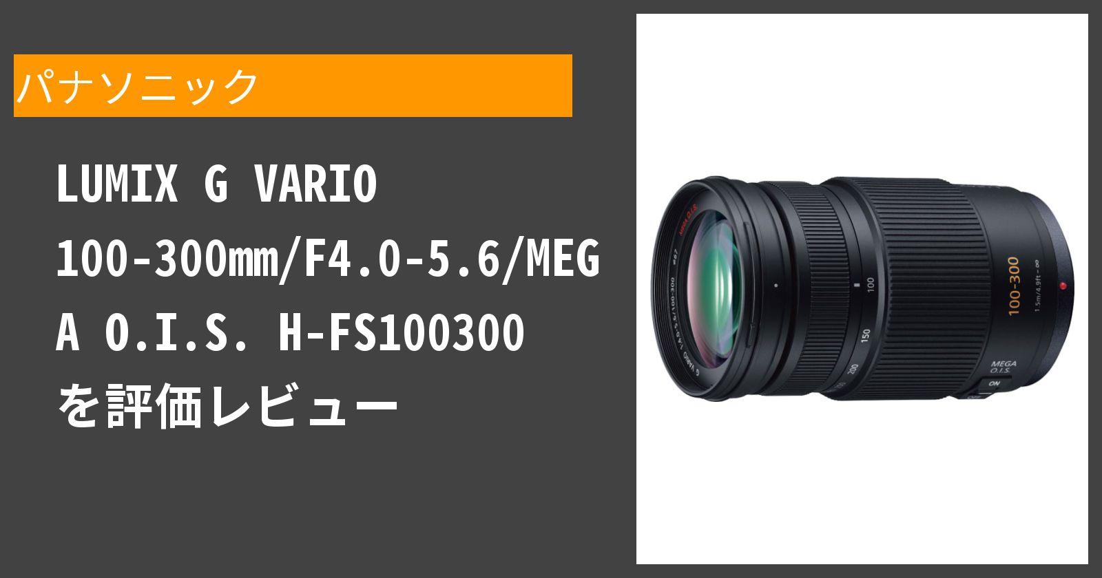 LUMIX G VARIO 100-300mm/F4.0-5.6/MEGA O.I.S. H-FS100300を徹底評価