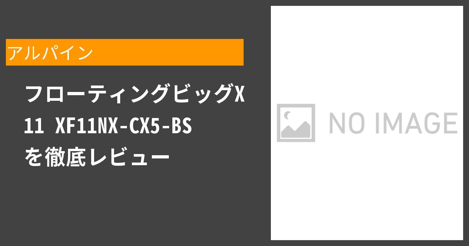 フローティングビッグX 11 XF11NX-CX5-BSを徹底評価