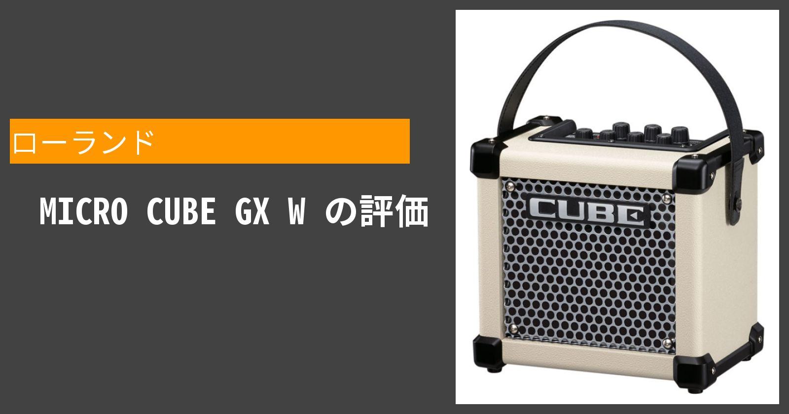 MICRO CUBE GX Wを徹底評価