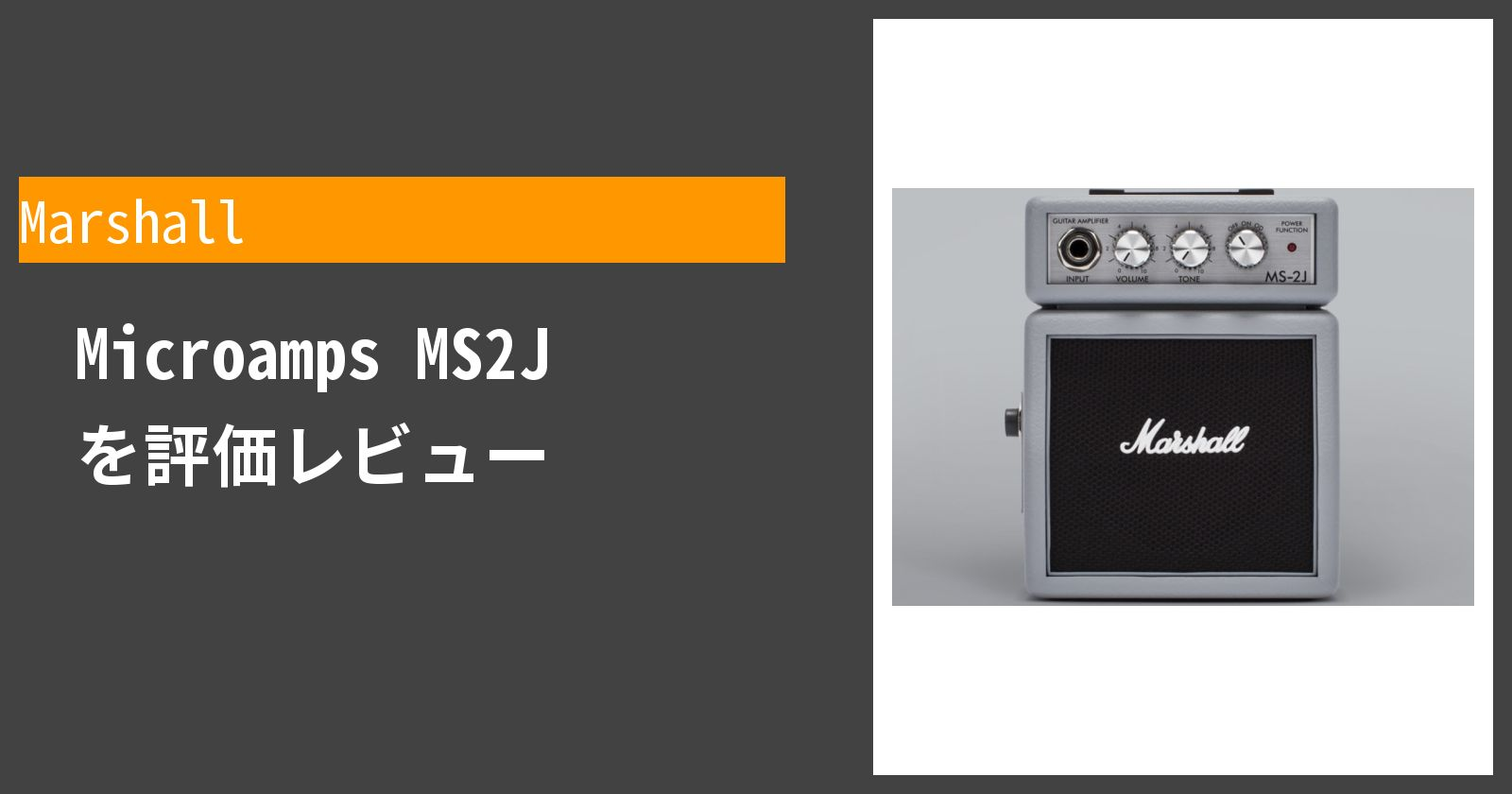 Microamps MS2Jを徹底評価
