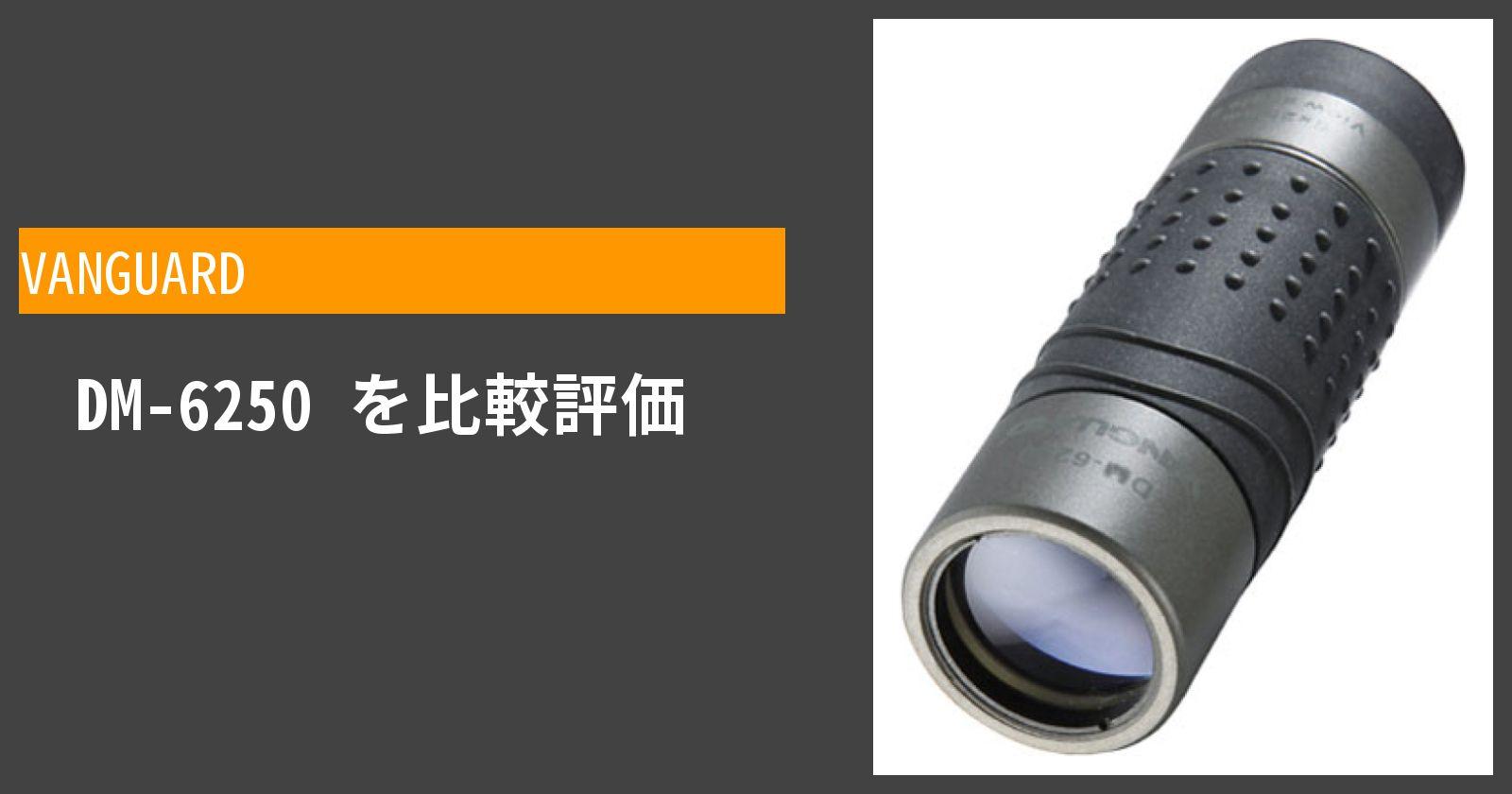 DM-6250を徹底評価