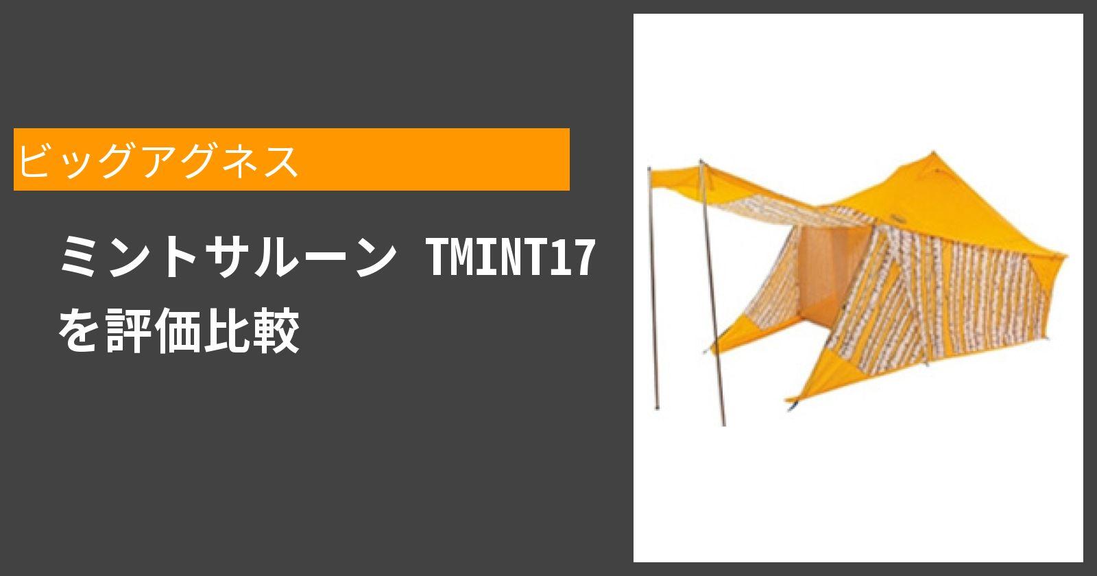 ミントサルーン TMINT17を徹底評価
