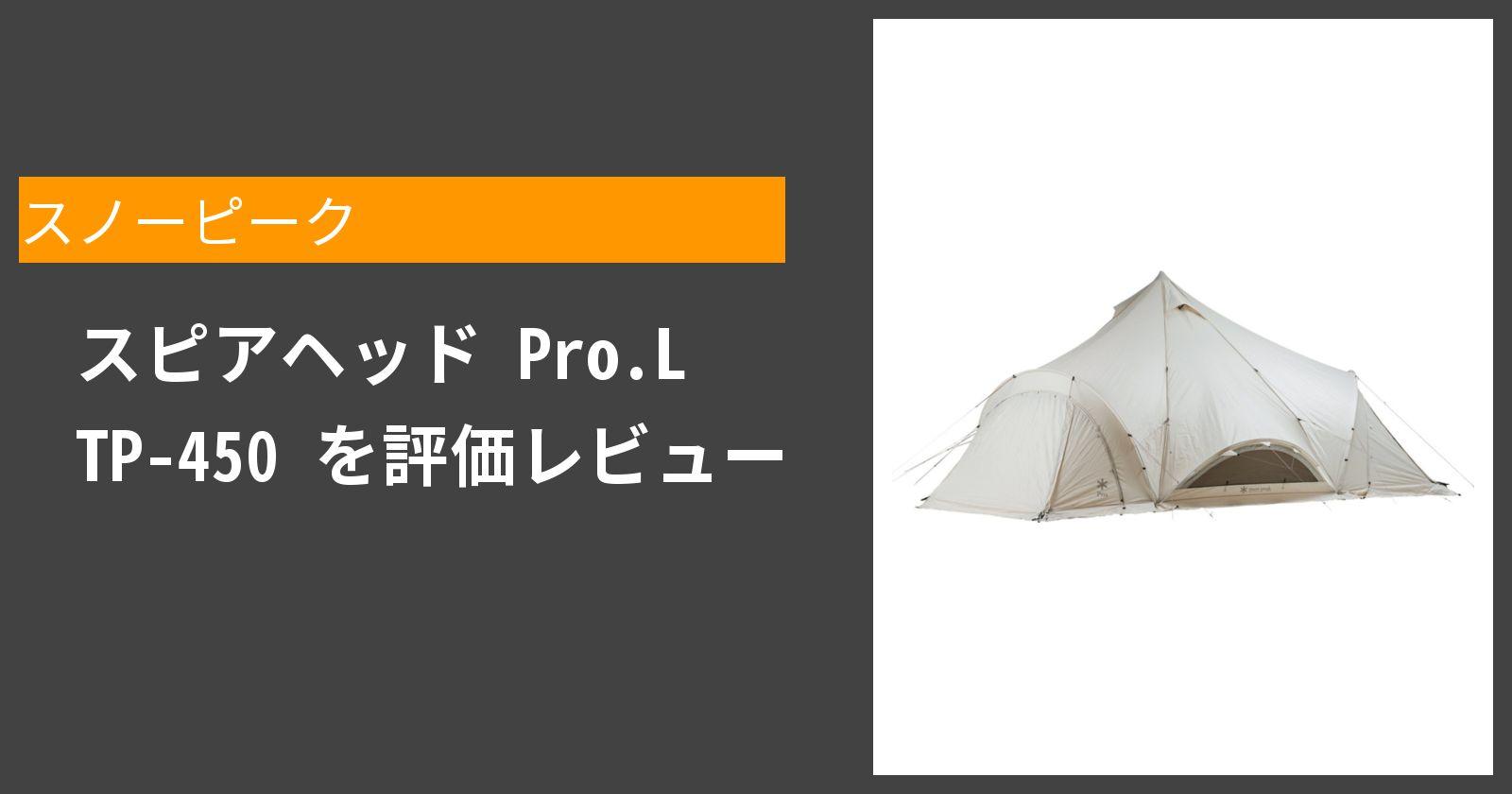 スピアヘッド Pro.L TP-450を徹底評価